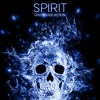 spirit_photoshop_action_11711489_icon