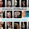 Anatomy 3d4medical and human anatomy atlas logo icon