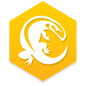 Komodo ide 10 icon