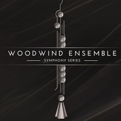 Native instruments symphony series woodwind ensemble icon