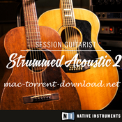Native instruments session guitarist strummed acoustic 2 icon