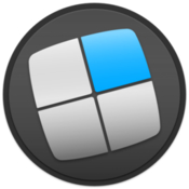 Mosaic professional level window management icon