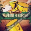 Organic loops traditional brazilian percussion multiformat icon