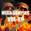 Mega samples vol 89 icon