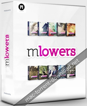 Mlowers full bundle 50 profressional lower thirds for fcpx and motion 5 icon