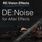 RE Vision Effects DE Noise for AE icon
