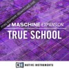 Maschine 2 expansion true school icon
