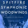 Spitfire audio spitfire symphonic woodwinds kontakt icon