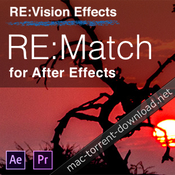Revisionfx re match icon