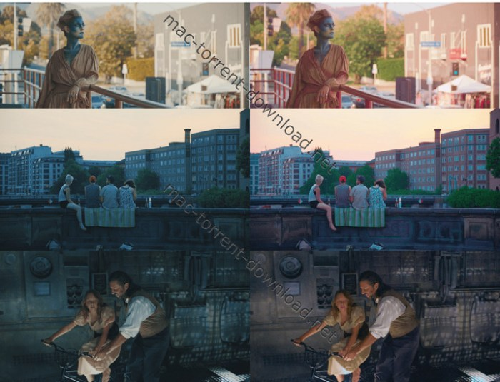 80_luts_color_grading_pack_by_iwltbap_mac_win