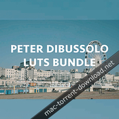 Peter dibussolo luts bundle icon