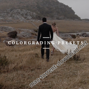 Maru films colorgrading presets for wedding film yama luts icon