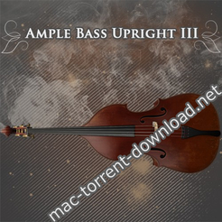 Ample bass upright iii icon