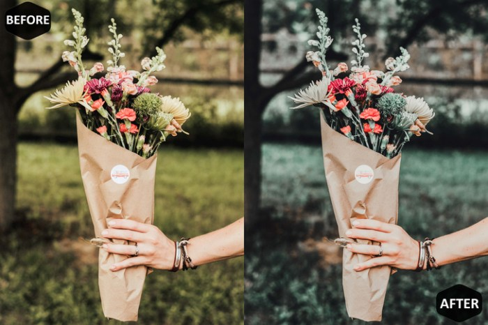 Forest Photoshop Actions and ACR Presets Screenshot 07 1cwgxgbn