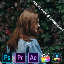 Phlearn Pro Cinematic Color Grading LUTs icon