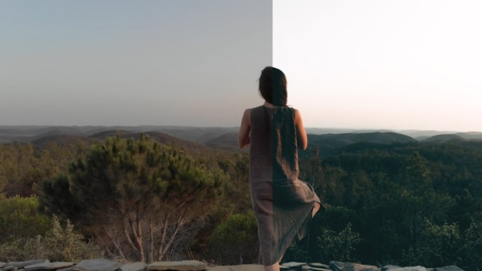 5 CINEMATIC LUT FOR ANY CAMERA for Final Cut Pro Premiere Pro Screenshot 04 ikzegan