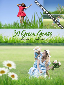 30 Green Grass Photo Overlays 26414686 icon