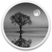Reflect Studio icon