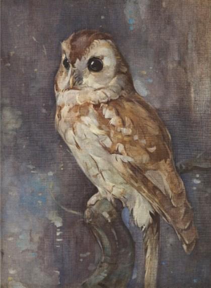Barn Owl (2013) by Joseph Crawhall