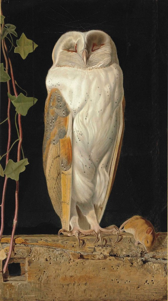 The White Owl (1856)