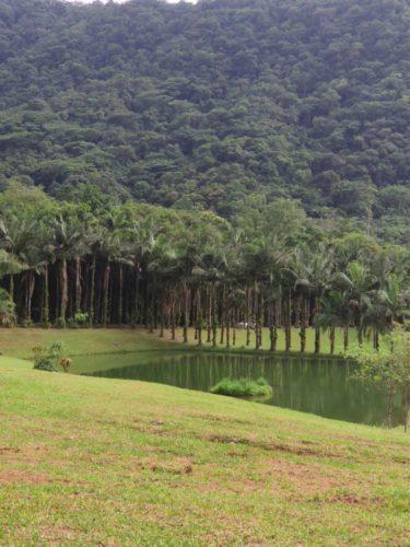 Camping Recanto Diamante-Joinville-SC-Foto Marina Cortizo - 3