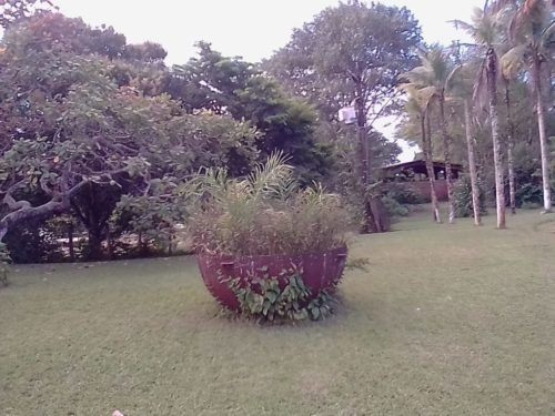 Camping Adventure Camping Hostel in Farm-jaboatão dos Guararapes-Recife-PE-10