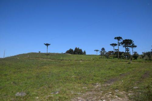 camping fazenda do pontão-são José dos Ausentes-RS-6