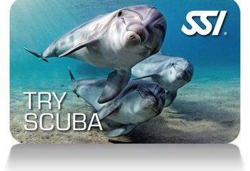 TRY SCUBA DIVING (AGUAS ABIERTAS)