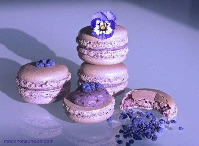 Macarons myrtille violette IMG_2434