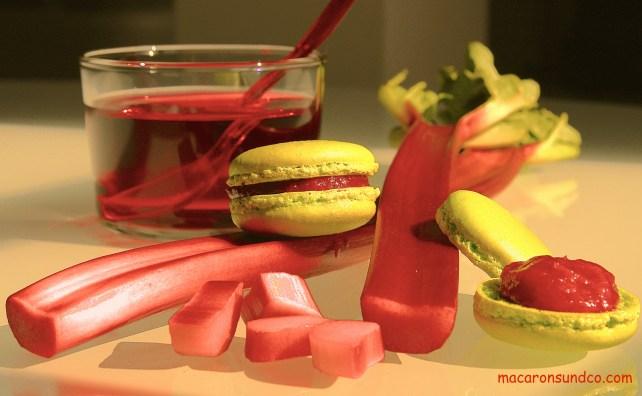 Macarons rhubarbe IMG_2578