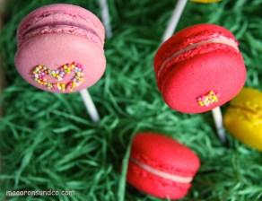 Macarons Pops 3 IMG_3145