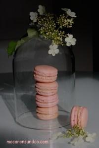 Macarons cloche IMG_4010