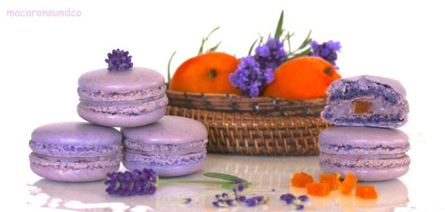 Macarons lavande IMG_9212