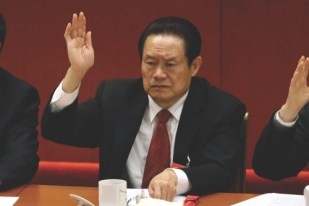 Zhou Yongkang, then Chinese Communist Party Politburo Standing Committee member in charge of security