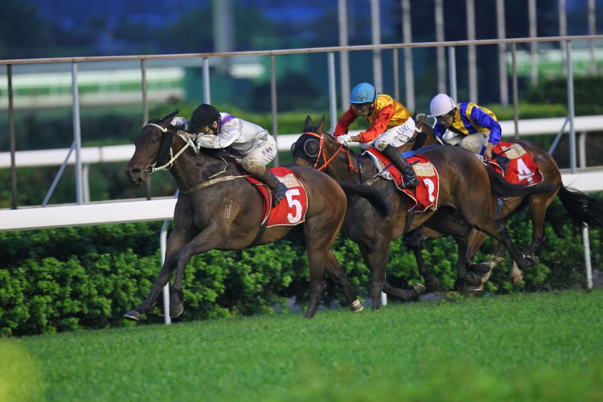 Government approves extension of horse race concession until 2024
