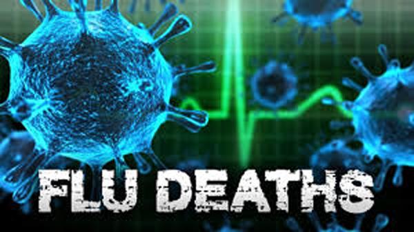 Flu kills 86-year-old man
