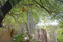 Hippie Tree Glenrosa Journeys