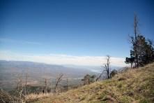 Mt. Ord Roosevelt