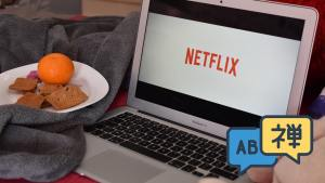 How to change the Netflix Language