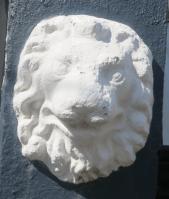 Qld Terrace Lion Head ix