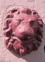 Qld Terrace Lion Head vii