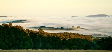 15_dm_morning fog