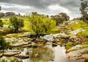6. 2018_teawamutu_a008_nature_spring storm on mcivor creek