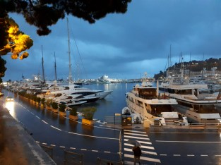 monaco by night_