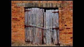webbie shed door