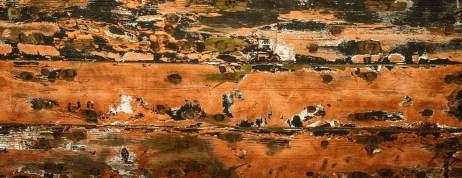 Landscape135