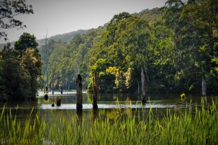 1. Lake Elizabeth-7