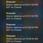 DropCam HD alerts