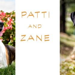 Rescue Dogs Patti and Zane