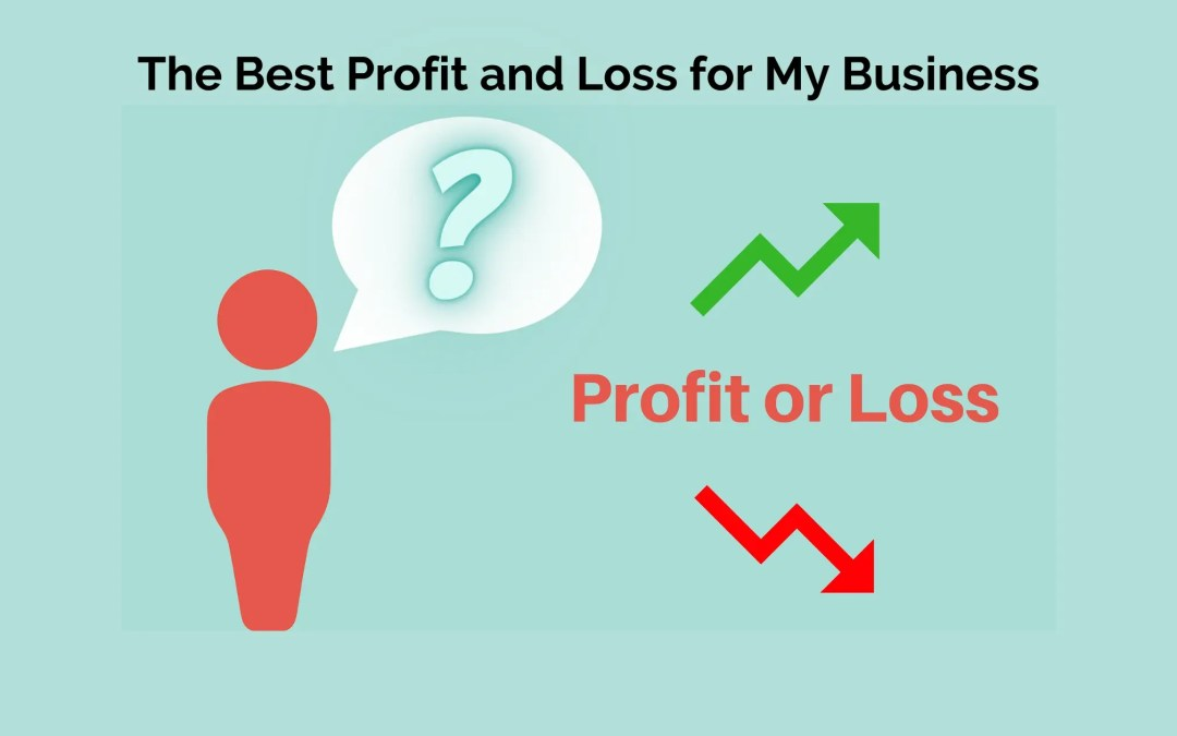 The Best Profit and Loss for My Business